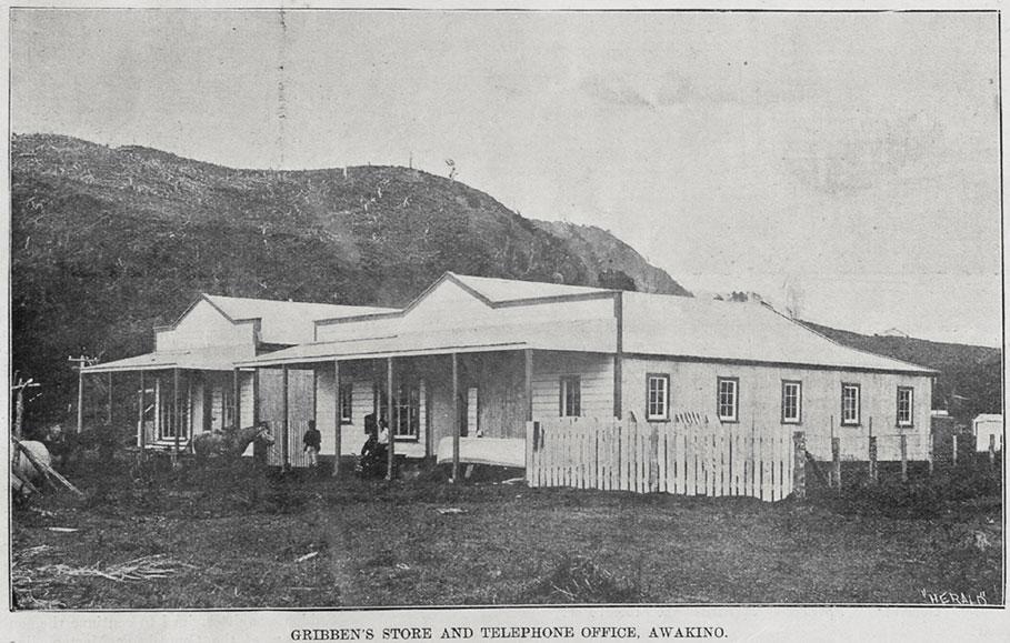 Gribben's store Awakino 1899
