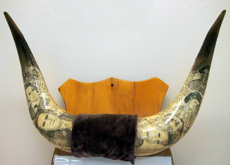 scrimshaw bullock horns displayed in the Mokau Museum.