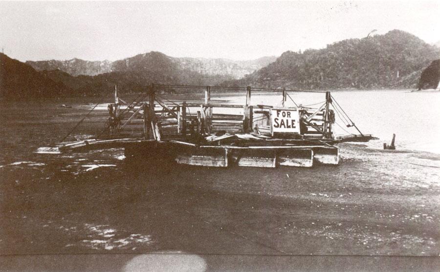 Mokau River punt put up for sale